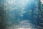 木下由貴 写真展「nayuta」