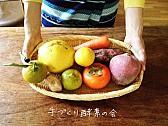 手作り酵素の会 vol.1 2013冬